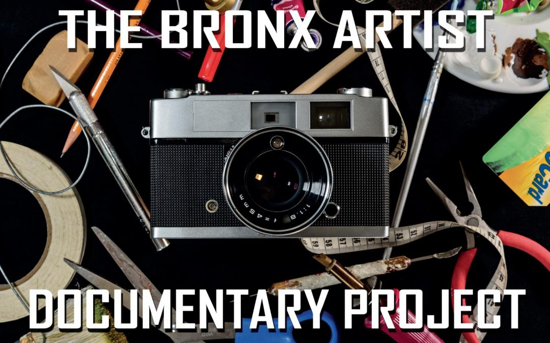 The Bronx Artist Documentary Project Book   2014